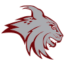 North Linn Logo