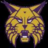 Webster City Logo